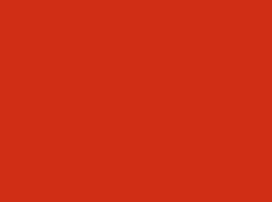 logo_natys